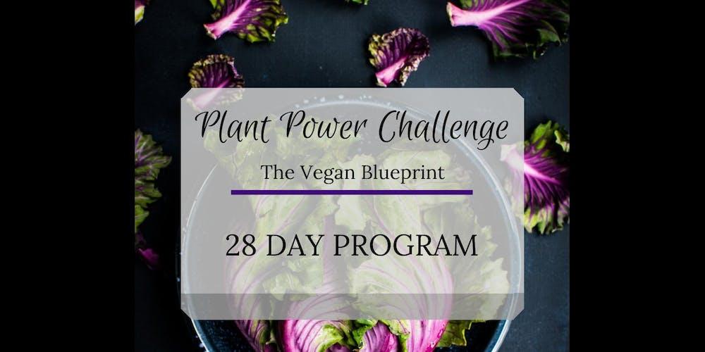 plant revolution 1