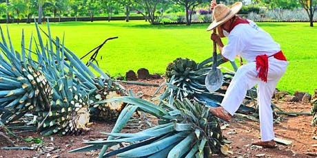 Agave Spirits - Exploration of Tequila, Mezcal and More tickets