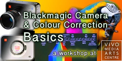 Blackmagic Camera & Colour Correction Basics