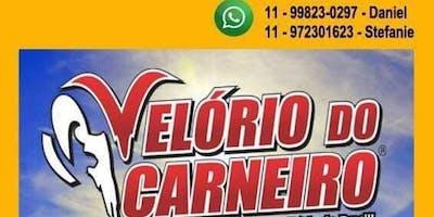 Excursão Velório do Carneiro 2019