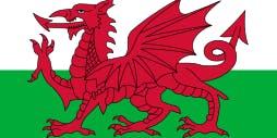 Cymru Branch Meeting