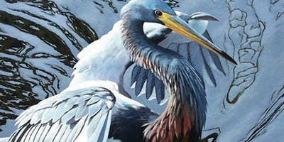 1 Day Workshop: Paint the Beautiful Lowcountry Birds with Addison Palmer