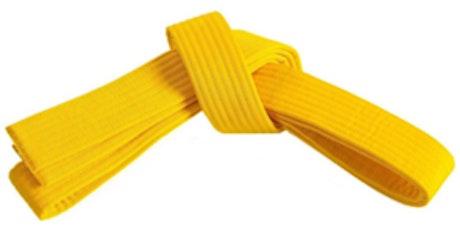 Lean Six Sigma Yellow Belt Level (1 Day) - Adelaide CBD Classroom tickets