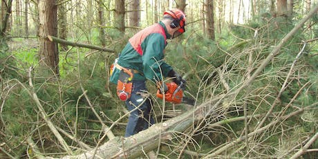 Chainsaw Maintenance and Crosscutting, Safe Felling of Trees  tickets