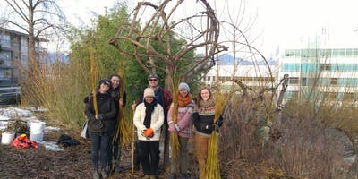 WINTER WILLOW WORK PARTY!