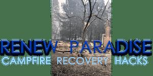Renew Paradise: Community Hack Days