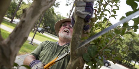 Tree Trimming for Hurricane Season tickets