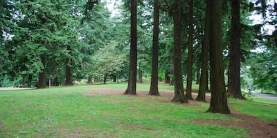 Writing and Nature-Play Summer Camp