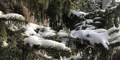 Teaching in a Winter Wonderland- Chadron