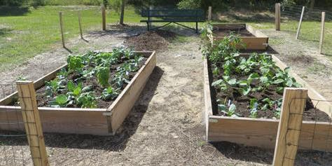Spring Vegetable Gardening and Microirrigation