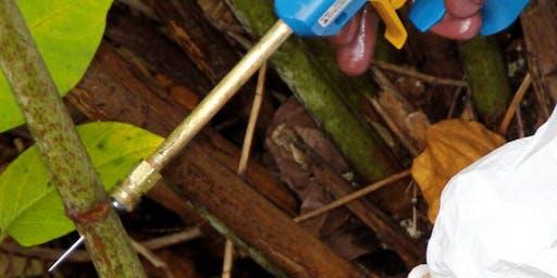 Pesticides Application Training,Stem Injection (PA6INJ)