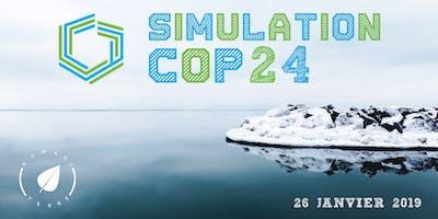 Simulation COP24