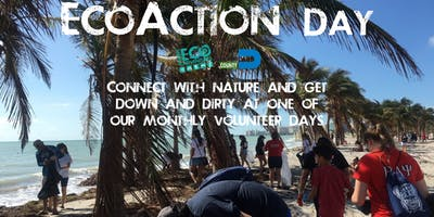 EcoAction Day at Crandon Park (Volunteer Day)