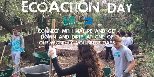 EcoAction Day at Arch Creek Park (Volunteer Day)
