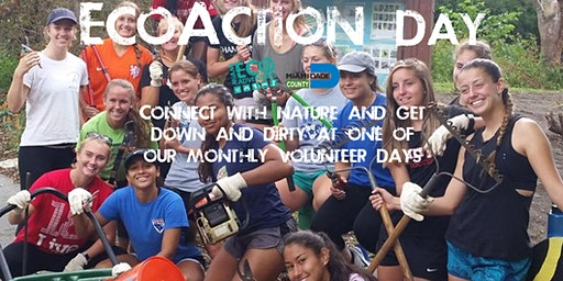 EcoAction Day at Castellow Hammock Park (Volunteer Day)