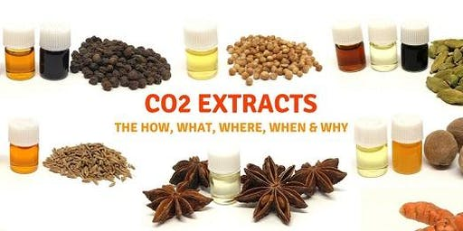 CO2 EXTRACTS – THE HOW, WHAT, WHEN, WHERE AND WHY IN AROMATIC THERAPIES