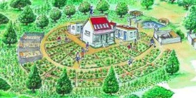 Designing Edible Gardens, Plots and More