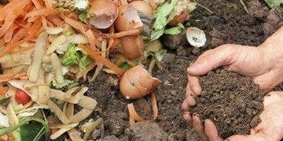 Creating Healthy Compost