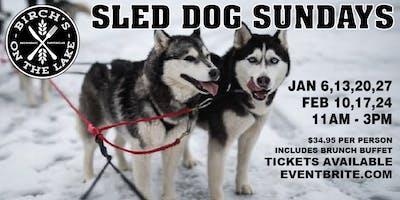 Sled Dog Sunday\