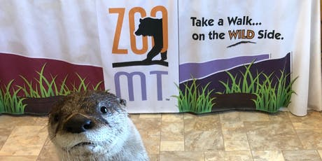 Sam and Friends Otter Meet and Greet tickets