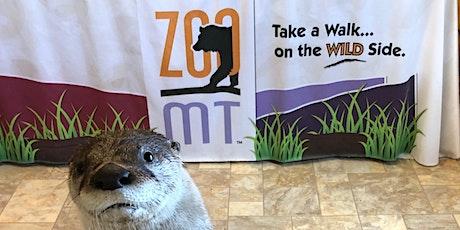 Sam the Otter & Friends Meet and Greet tickets