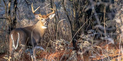 Whitetail Deer Night and Chapter dinner meeting