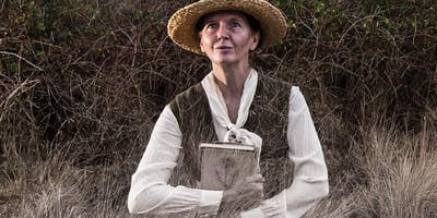 The Natural Conservatorium For Wise Women: Pop-up Theatre Experience