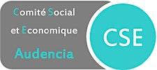 Comité Social et Economique logo