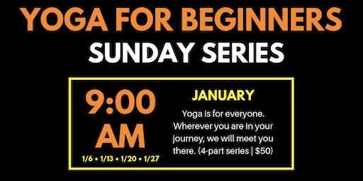 Yoga Basics: Beginner Yoga Series