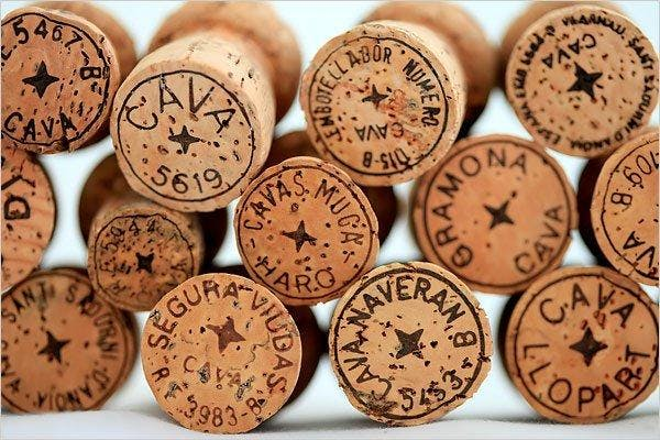 CAVA - Spanish Sparkling Wine Tasting Class