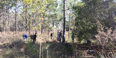 Friends of Brooker Creek Return the Preserve Work Day