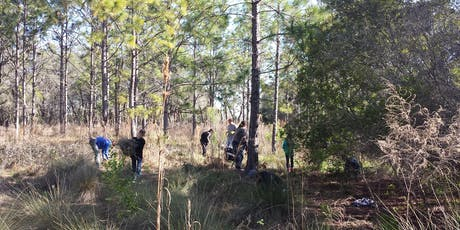 Friends of Brooker Creek Return the Preserve Work Day tickets