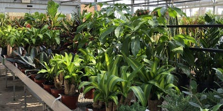 Platt Hill Nursery Houseplant Festival Tickets