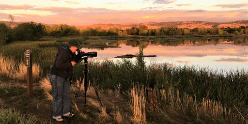 Birding Walden Ponds Through the Seasons