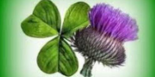 MLFHS Talk Irish and Scottish research