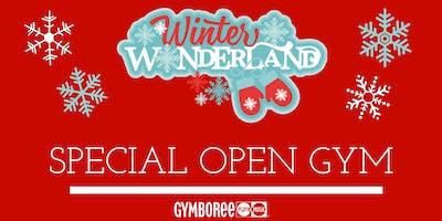 Winter Wonderland Open Gym