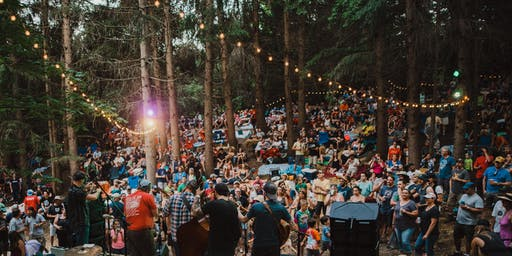 Duck Creek Log Jam 2019