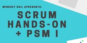 Formação Scrum Development - Scrum Master (PSM-1)