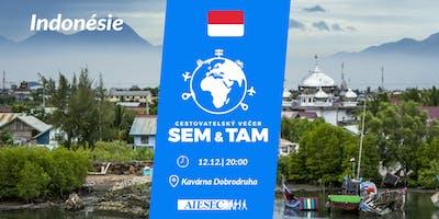 SEM & TAM: Indonésie