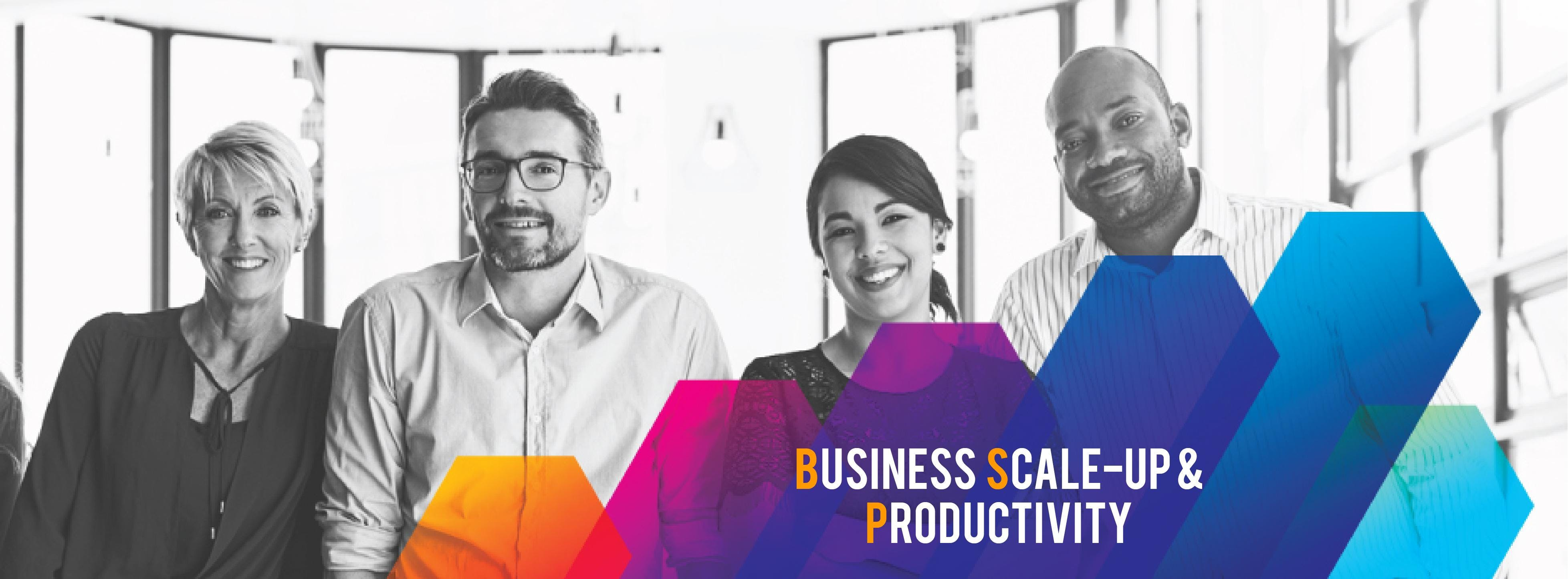 Business Scale-up and Productivity (BSP) Prog