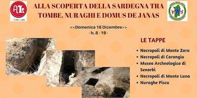 Visita guidata: Tombe, Nuraghi e Domus de Janas