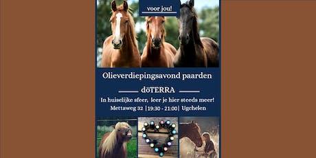 Paarden olieverdiepingsavond Apeldoorn 24 oktober 2019 tickets