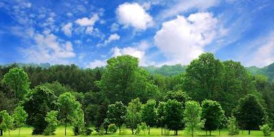 Basic Tree Inspection and Survey (LANTRA CLMC57X)