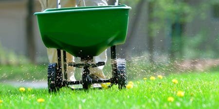 Florida friendly fertilizing
