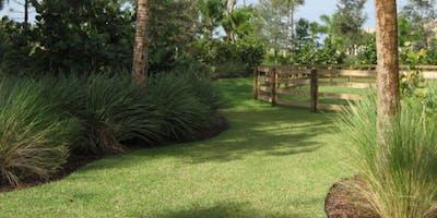 Let's create a Florida Friendly Landscape