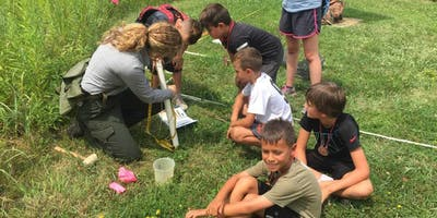 Junior Ranger Preserve & Protect Summer Camp