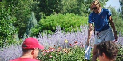 Waterwise Perennials Tour