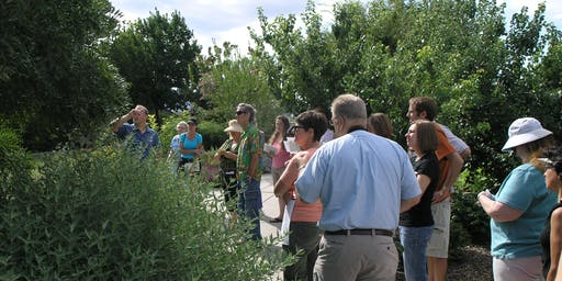 Waterwise Tree and Shrubs Tour