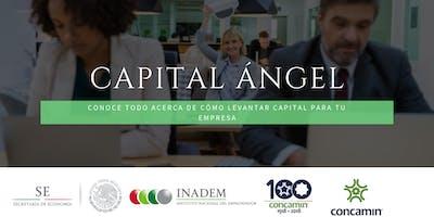 Programa para Capacitación de Emprendedores para Levantar Capital