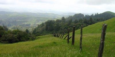 POST Hike at Lower La Honda Creek